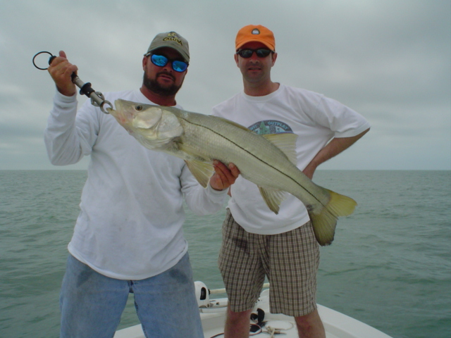 Let's go snook fishing in Florida, Marco island snook fishing guides