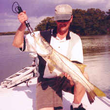 Flats fishing for snook