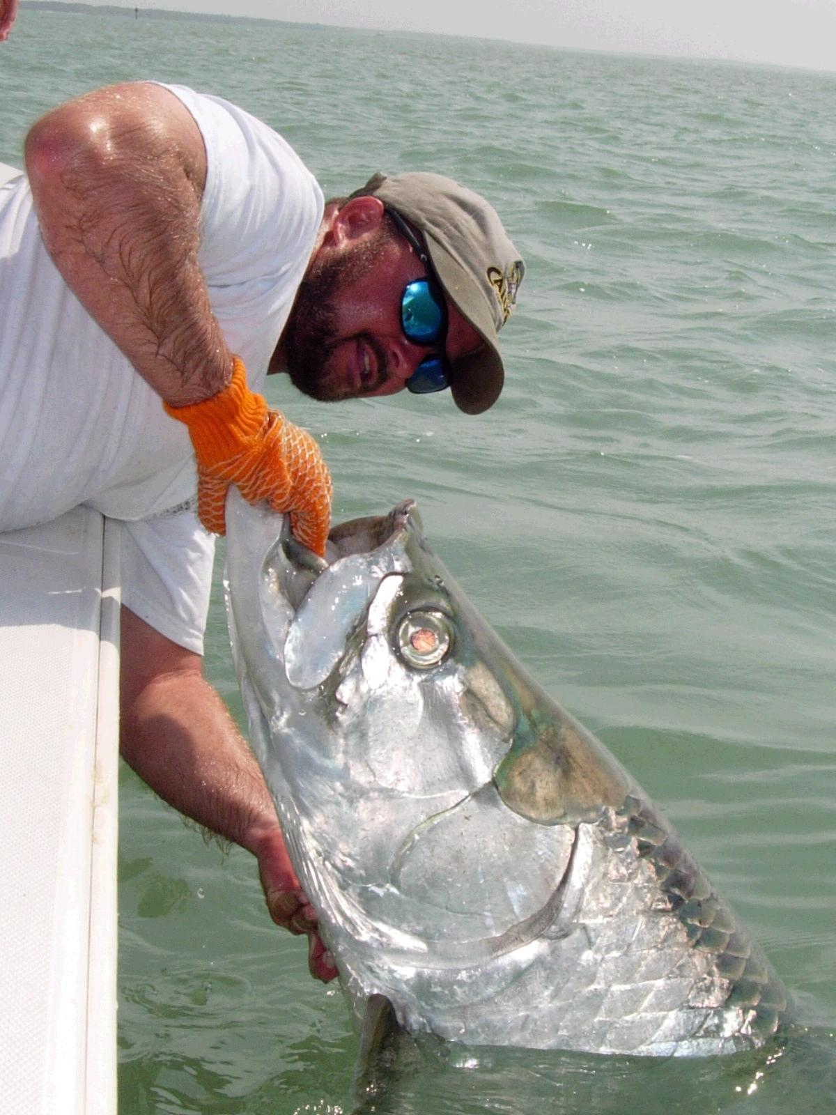 Giant Tarpon fishing