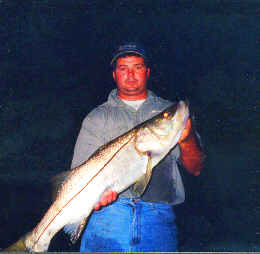 Night snook fishing
