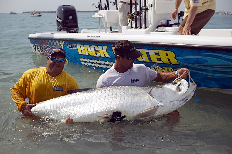Great Tarpon Fishing