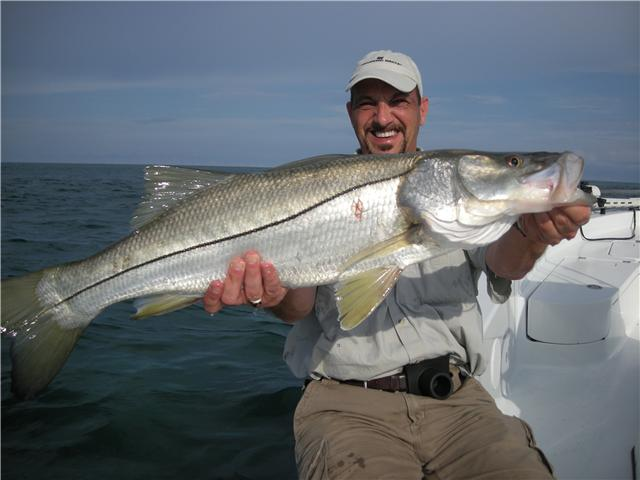 Trophy snook fishing